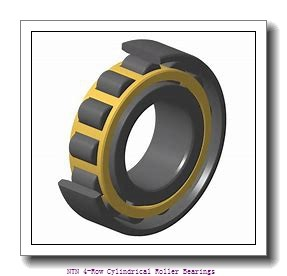 850,000 mm x 1180,000 mm x 850,000 mm  NTN 4R17002 4-Row Cylindrical Roller Bearings