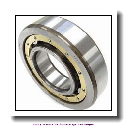 50,000 mm x 156,000 mm x 70,000 mm  NTN R1099V Cylindrical Roller Bearings Chain Conveyors