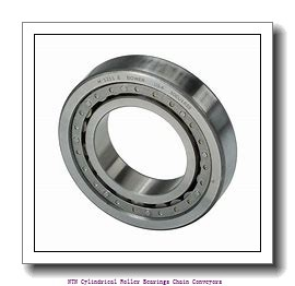 NTN R09A21V Cylindrical Roller Bearings Chain Conveyors