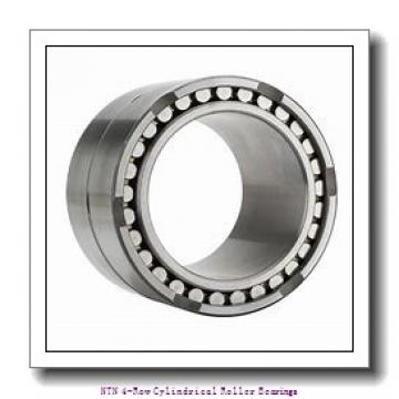 850,000 mm x 1180,000 mm x 650,000 mm  NTN 4R17004 4-Row Cylindrical Roller Bearings